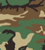 US Woodland pattern.png