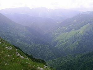 Sutjeska (river) - Hrčavka River valley, tributary of the Sutjeska within Sutjeska National Park
