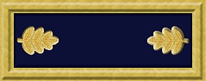 Solon Borland - Image: Union army maj rank insignia