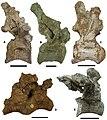 Upper Cretaceous European titanosaurs.jpg