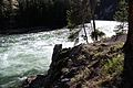 Upper Falls Yellowstone River 17.JPG