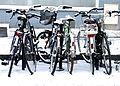 Vélos sous la neige (2).jpg