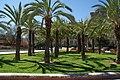 VIEW , ®'s - DiDi - RM - Ð 6K - ┼ , MADRID PARQUE de PEÑUELAS JARDÍN - panoramio (152).jpg
