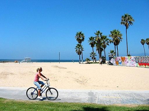 Venice Beach - panoramio - tonyfurrer