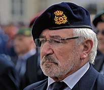 Veteran at Belgian National Day. Brussels, 2012.jpg