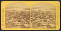 View from Bunker Hill monument, east, from Robert N. Dennis collection of stereoscopic views.png