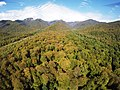 View in Lagodekhi National Park - ხედი ლაგოდეხის ეროვნულ პარკზე.jpg