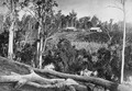 View of a property in scrubland at Yengarie, circa 1870.tiff