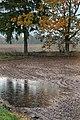 Vihm Osula küla talivilja põllul.jpg