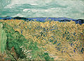 Vincent Van Gogh - Wheatfield With Cornflowers - Google Art Project.jpg