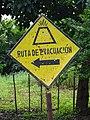 Volcano Evacuation Route - Near Santo Domingo - Ometepe Island - Nicaragua (31424908220).jpg