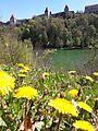 Wöhrsee mit der Burg von Burghausen.jpg