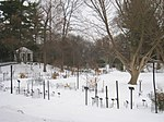 W. J. Beal Botanical Garden - IMG 8944.JPG