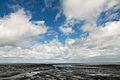 Wadden Sea Suva MatthiasSuessen-8468.jpg