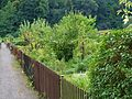 Walkmühlenweg, Pirna 124423706.jpg