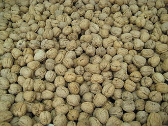 Juglans - The shells of walnuts