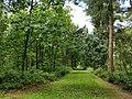 Wandelpad in Provinciaal Domein Vrieselhof 4.jpg