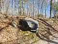 Whale Rock on Mapleville Road in Greenville Smithfield Rhode Island RI.jpg