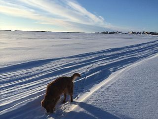 Whatì First Nation in Northwest Territories, Canada