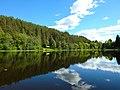 White lake of Kenozersky national Park.jpg