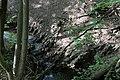 Wien-Hernals - Naturdenkmal 784 - Geologischer Aufschluss Kalkklippe.jpg