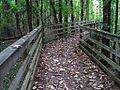 William B Clark Conservation Area Rossville TN 031.jpg