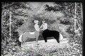 File:Winsor McCay - The Centaurs (c. 1921).webm