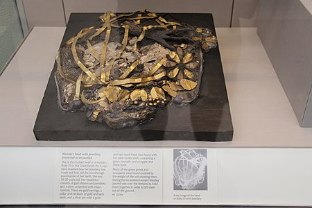 Woman's Head with Jewelry Preserved as Excavated.jpg