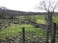 Woodhill Townland - geograph.org.uk - 349727.jpg