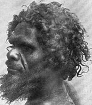Australoid race - Workii Australoid man from Gilbert River, South Australia