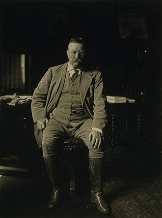 William H. Rau - Rau's portrait of President Theodore Roosevelt
