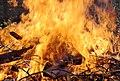 Wraxall 2013 MMB 32 Bonfire.jpg