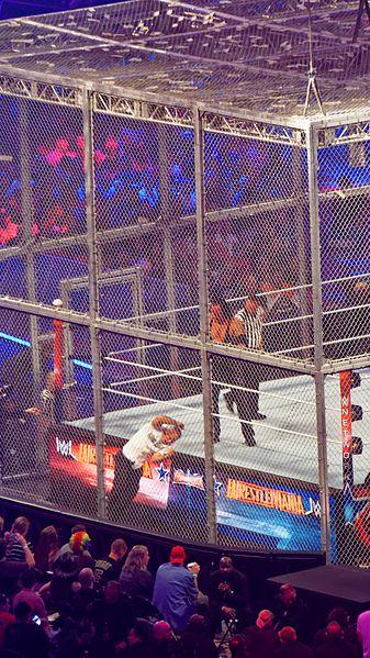 File:WrestleMania 32 2016-04-03 20-40-23 ILCE-6000 9958 DxO (27699711840).jpg