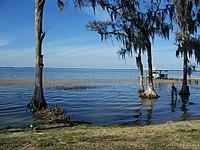 Yalaha FL Lake Harris03.jpg