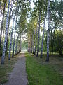 Yekaterinburg - Park dedicated to 50 years of Komsomol - photo 2.JPG