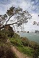 Yerba Buena Island - Wichary (16268891545).jpg