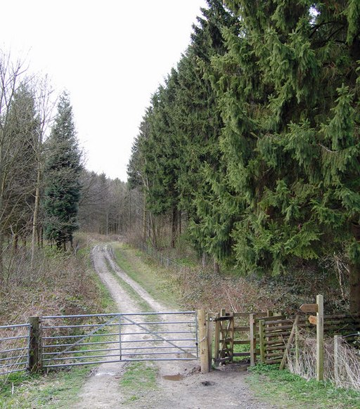 Yorkshire Wolds Way - geograph.org.uk - 757443