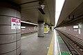 Yoyogi Station Oedo Line Platform.jpg