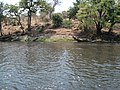 ZambeziBotswana 15.JPG