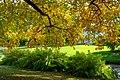 Zeist - park - autumn 2018 (30352441957).jpg