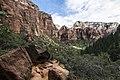 Zion National Park (15186517167).jpg