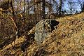 Zlatnice - skalní ostroh3.jpg