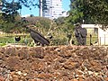 Zoológico de Goiânia 0.jpg