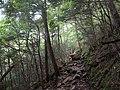 Zuidelijke wandelroute naar de berg Mizugaki, -19 september 2017 a.jpg