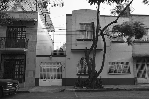"""Roma"" filming locations in Mexico City - 2 - monochrome"