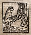 'Of the Catte' Wellcome L0074604.jpg