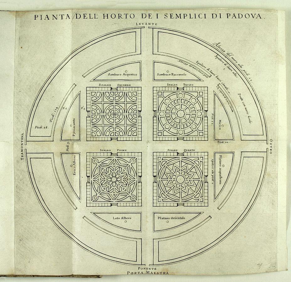 Padova Botanic Garden_plan