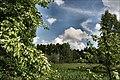 Łopuchówka - panoramio (67).jpg