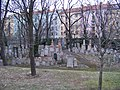 Žižkov, starý židovský hřbitov (04).jpg