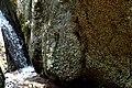 Πεταλούδες στα βράχια.jpg